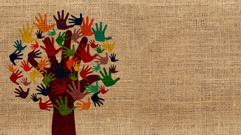 Milyen alapkompetenciákkal kell rendelkeznie az önkénteseknek?
